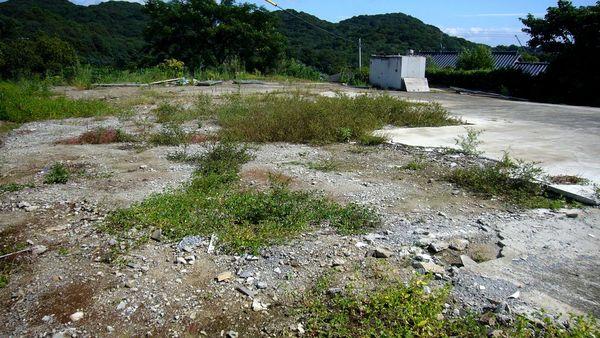 今村350坪 (2).JPG